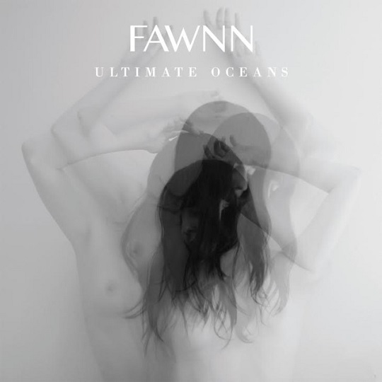 FAWNN-resized